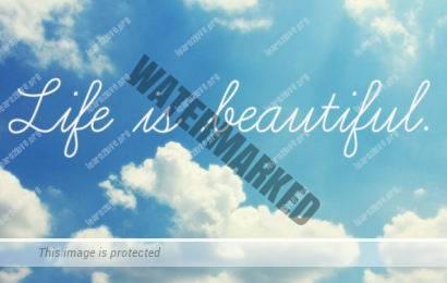 elu on ilus